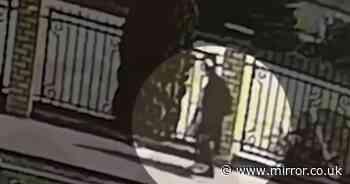 Russian gunman seen 'walking towards school with rifle before slaughtering nine'