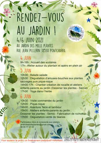 Jardin ouvert et ateliers de printemps Le jardin des mille plantes vendredi 4 juin 2021 - Unidivers
