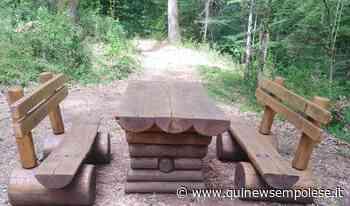 Cittadini modello fanno manutenzione nel bosco - Qui News Empolese