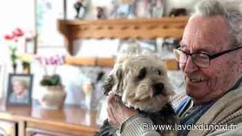 À Orchies, Vanille, offerte par la ville et la SPA, adoucit la vie de Maurice, 89 ans - La Voix du Nord