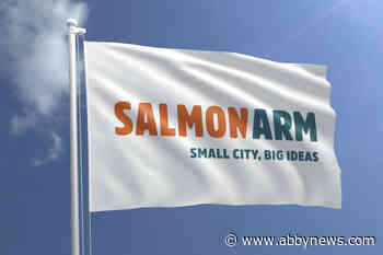 Time for a change: Salmon Arm's 'corporate' city flag is on the way out