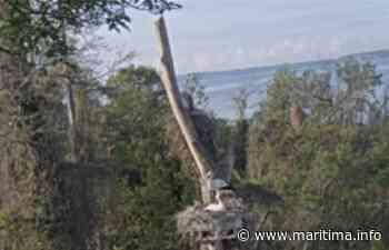 Carnet rose chez les cigognes de Miramas - Miramas - Nature - Maritima.Info - Maritima.info