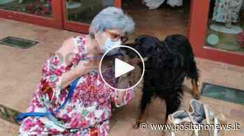 Positano-Vico Equense, ecco la storia della Prof. Maria Grazia Cinque e il suo piccolo amico - Positanonews - Positanonews