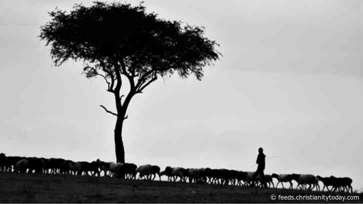 The Way of the Shepherd: The Biblical Foundation of Church and Church Discipline