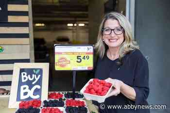 Money running out for fresh fruit, vegetables, milk in B.C. schools