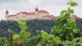 Partnergemeinde Furth bei Göttweig - Die Weingärten sind bereit - idowa
