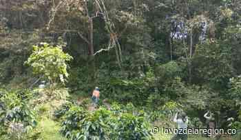 Actividades para impulsar el aviturismo se realizan en Paicol - Huila