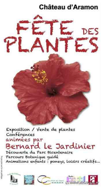 Fête des plantes Parc du château Aramon - Unidivers