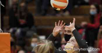 Girls volleyball: Mid-Suburban League all-conference team