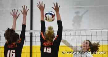 Girls volleyball: North Suburban Conference all-conference team