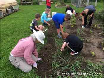 Chelsea Intergenerational Garden Summer Internship Opportunity - thesuntimesnews.com