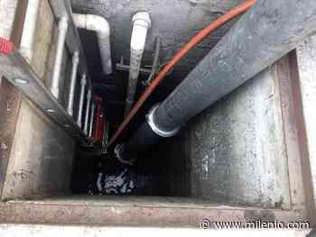 Por qué limpiar tu tinaco o cisterna y cómo hacerlo - Milenio.com