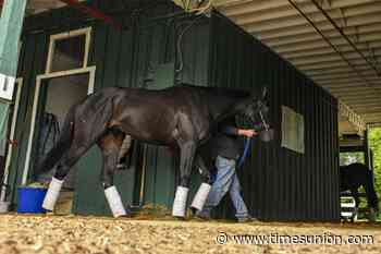 For now, Medina Spirit is part of 10-horse Preakness field.