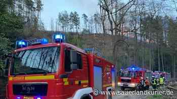 Waldbrand bei Marsberg-Essentho: Schwieriger Großeinsatz für die Feuerwehr - sauerlandkurier.de