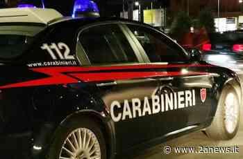 Solofra, importavano hashish dalla Spagna nascondendola nel mangime per animali: due arresti - 2a News