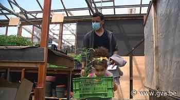 Plantenruilbeurs voor stadstuiniers in Antwerpen (Antwerpen) - Gazet van Antwerpen