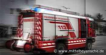 Großaufgebot rückte in Schierling aus - Landkreis Regensburg - Nachrichten - Mittelbayerische