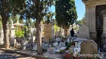 Palermo, si insedia Leonardo Cristofaro: nuovo direttore del cimitero dei Rotoli - Giornale di Sicilia
