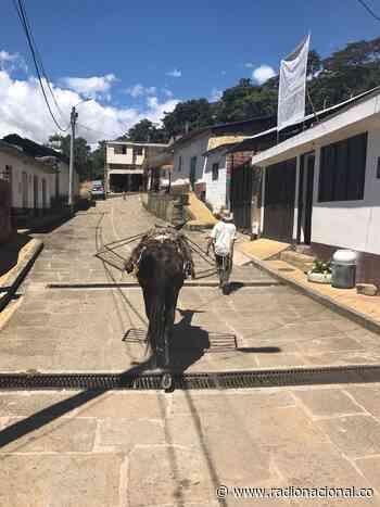 San José de Pare, tierra donde florecen la paz y la amistad | Radio Nacional - http://www.radionacional.co/