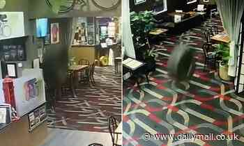 Tyre makes its way through a pub almost cleaning up a man and ending up in the POKIE room [VIDEO]