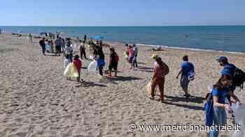 Torvaianica, esercito di volontari pulisce spiaggia e fondali dai rifiuti - MeridianaNotizie