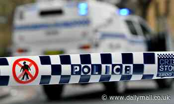 Homicide detectives are called in to investigate the suspicious death of a woman in a suburban home