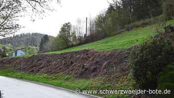 Mehr Gästebetten in Schiltach - Hotel-Pläne wechseln ihren Standort - Schwarzwälder Bote