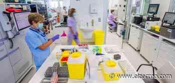 Sagardui: «No podemos comportarnos como si la pandemia ya no existiera» - El Correo