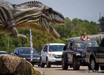 La Roche-sur-Yon : le Monde des Dinosaures débarque en drive - actu.fr