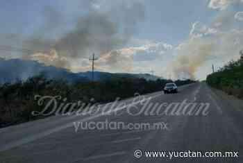 Reportan incendio en la carretera Ticul- San José Tipceh - El Diario de Yucatán
