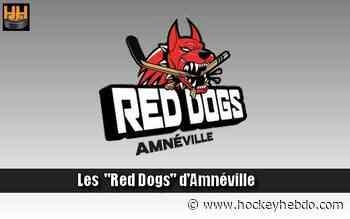 Hockey sur glace : D2 : Départ à Amneville - Transferts 2021/2022 : Amnéville (Les Red Dogs) | Hockey Hebdo - hockeyhebdo Toute l'actualité du hockey sur glace