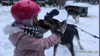 Stories from Anemki Wajiw: Dog sledding