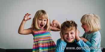 Geschwisterkonflikte: Streit nervt, ist aber wichtig für Kinder - DER STANDARD