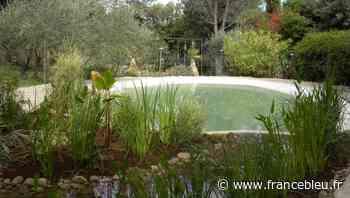 Le jardin d'Eden de Ventabren - France Bleu
