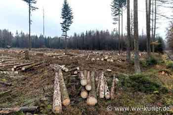 Bundeswaldprämie an VG Bad Marienberg für nachhaltige Wiederbewaldung - WW-Kurier - Internetzeitung für den Westerwaldkreis