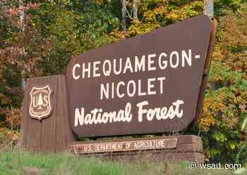Planned burn at Chequamegon-Nicolet National Forest - WSAU News