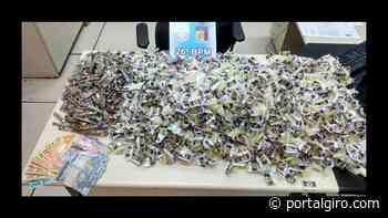 Polícia apreende grande quantidade de drogas no sertão do Carangola - Portal GIRO