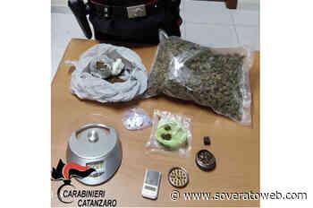 In auto con oltre mezzo chilo di droga, 42enne arrestato - Soverato Web