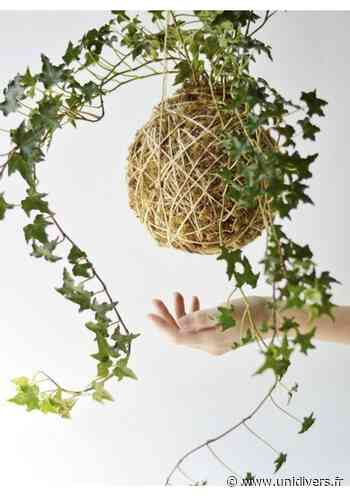 Atelier d'art végétal : le kokedama japonais Jardin des Cimes Passy - Unidivers