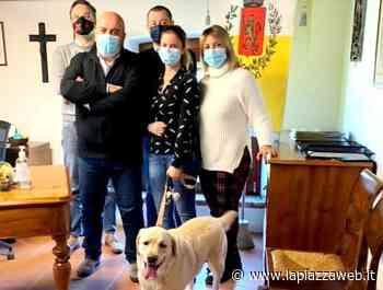 """Limena è """"pet friendly"""": il Municipio apre agli amici a quattro zampe - La Piazza"""