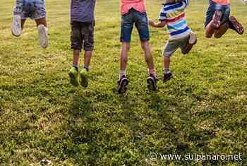 Soliera, indetti bandi per la selezione di progetti culturali e campi gioco estivi - SulPanaro | News - SulPanaro
