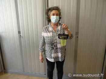 Izon : la commune en lutte contre les frelons et les moustiques - Sud Ouest