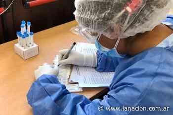 Coronavirus: reportan 496 muertos y 24.475 nuevos casos - LA NACION