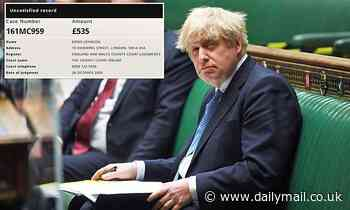 Boris Johnson's £535 county court ruling came after Covid conspiracy theorist's slander allegation