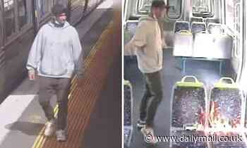 Laverton, Melbourne: Video shows a hoodie-wearing eshay setting fire to a train before walking away