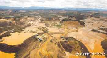 La campaña que contribuye a reforestar la reserva natural de Tambopata en la que podemos colaborar - El Comercio Perú