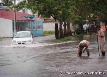 Residentes del Floresta esperan librar lluvias con obras hidráulicas - Imagen de Veracruz