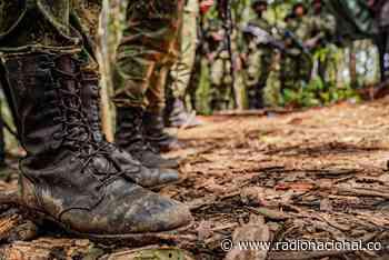 Disidencias de las Farc liberaron al exconcejal de Caloto, Cauca - http://www.radionacional.co/