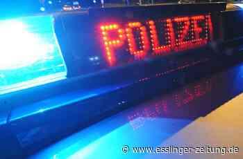 Zeugenaufruf in Leinfelden-Echterdingen: Bagger gestohlen - esslinger-zeitung.de
