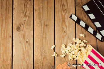 Projection de film adultes Maison du lien social Cornebarrieu - Unidivers